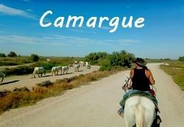 Voyages à cheval en CAMARGUE